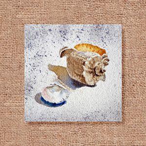 Seashells Art Collage IV