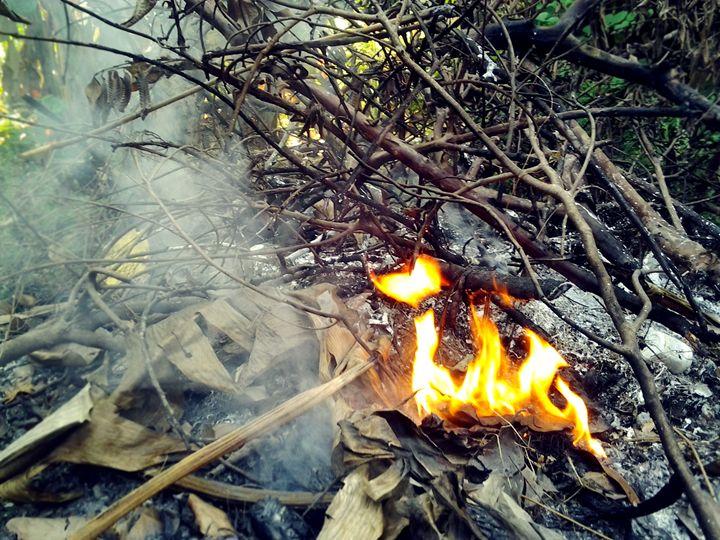 Fire & Smoke - Weird Cookie