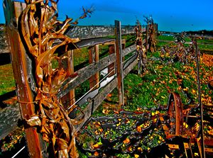 CHAINSAW FENCE