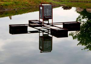Feeder Reflections