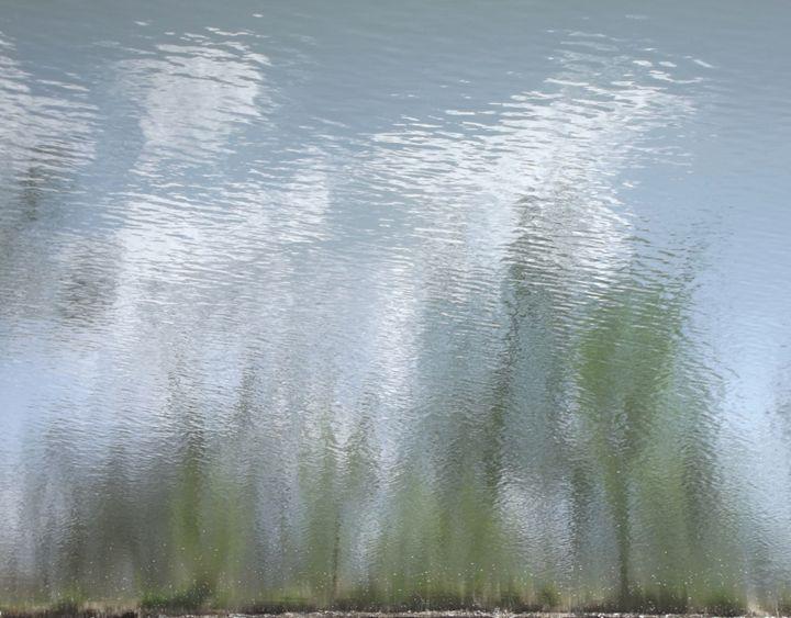 impressionism XVI - Curtis H. Jones - Avalon Nature Photography