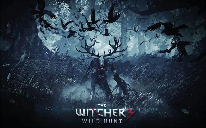 Witcher 3 Wild Hunt - Draze Design