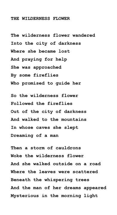 the wilderness flower - The Tricycle Moon