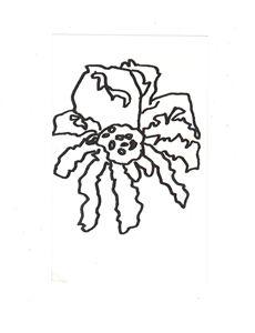 Spider Nation dots 2