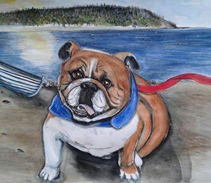 RIver Boy- Bulldog