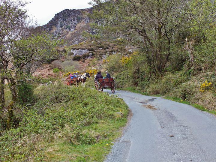 Traffic Jam Ireland - Pictures of Ireland