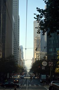 San Francisco's Web of Cables - Sandra Hagan