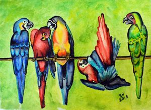 """Playful Parrots"" - Sandra Hagan"