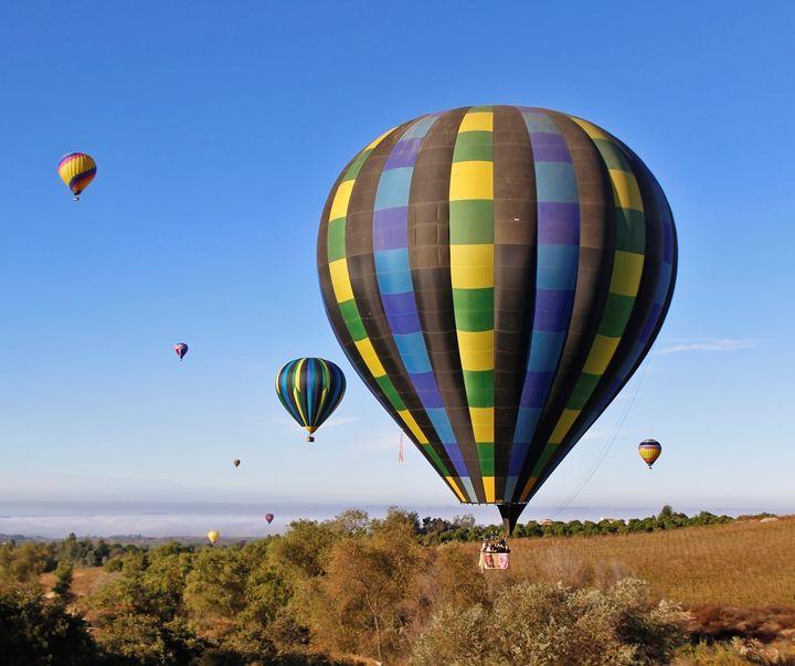 Hot Air Balloons - Nick Melesko Photography