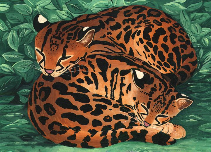 Margay Cats -Acrylic on Canvas Board - Michele Aguilar