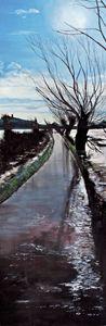 Flooded road, Glastonbury.
