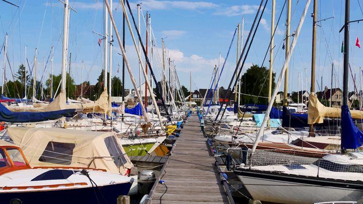Let's Go Sailing! - #CALARTNZ