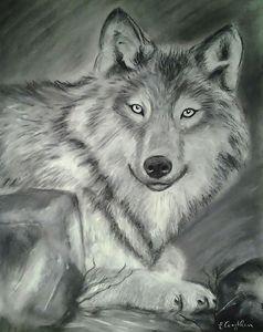 Wolf behind Rocks