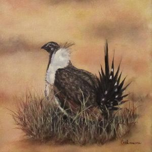SAGE GROUSE - Gilmore Fine Art