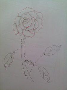 Pencil Red Rose