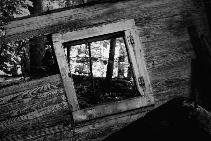 The open window - Mandi May photography
