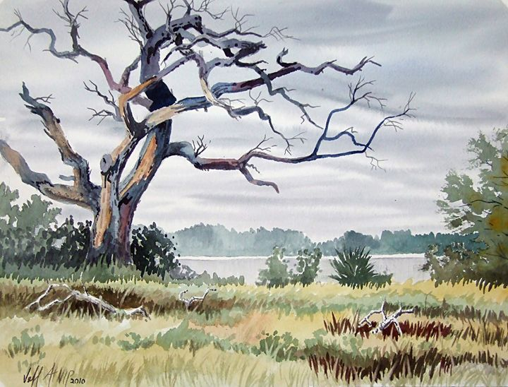 Live Oak Deer Island - Jeff Atnip Art