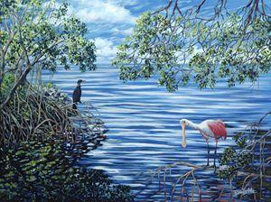 Fishing the Mangroves