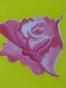 Pink Rose Yellow Background