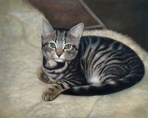 Pet portrait - cat - Richard Zheng