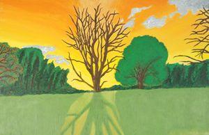 Shouldice Tree