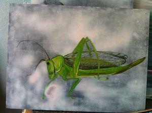 "bug series ""Cricket2"