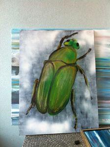 "bug series ""beetle"""