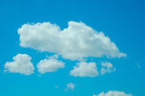Blue sky ducky
