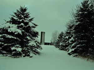 Winter road to the barn