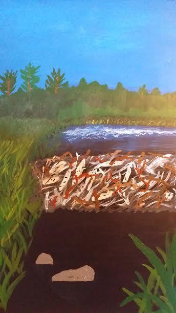 Land Bridge - Jay Whol Nature Gallery