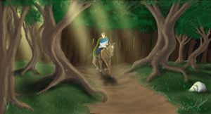 Riding in the Woods