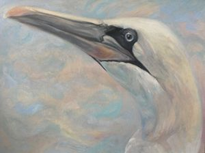 Gannet (profile bust)