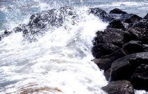 Dania Beach 2