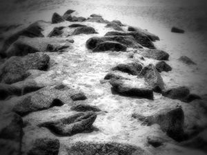 Dania Beach 1
