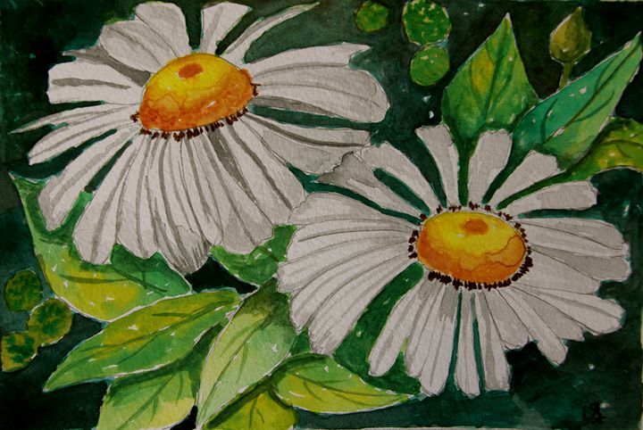 Happy daisies - Paintings by Sam