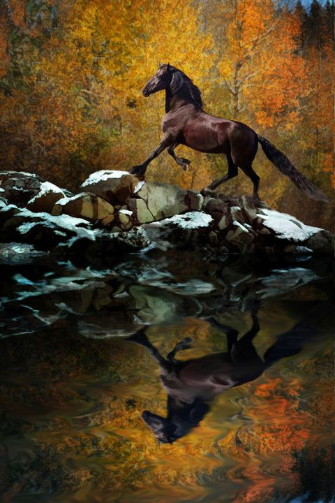 Reflections of Fall - WILD ART BY MELINDA