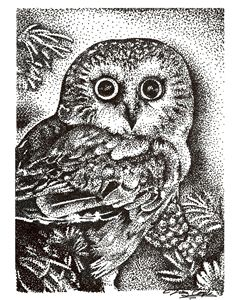 Pointillism Owl - Nature Print