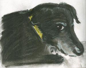 Darby sketch
