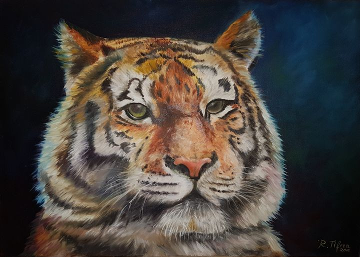 Tiger - Paintings