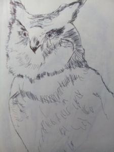 illustration of an owl