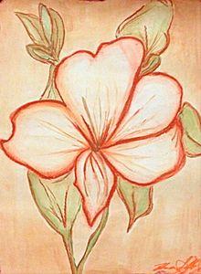 Flower in Sanguine