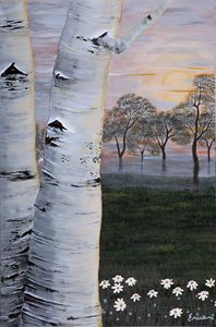Twin Birch Trees