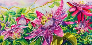 Passionflower Party