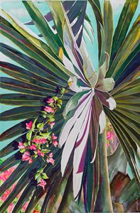 Fan Palm with Bourgainvillia - Janis Ilene Images