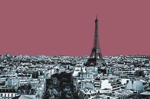 Paris Delineated