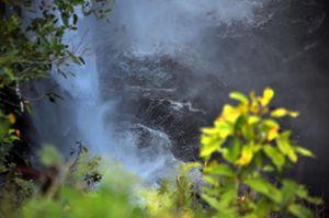 The bottom of Opaeka'a Falls