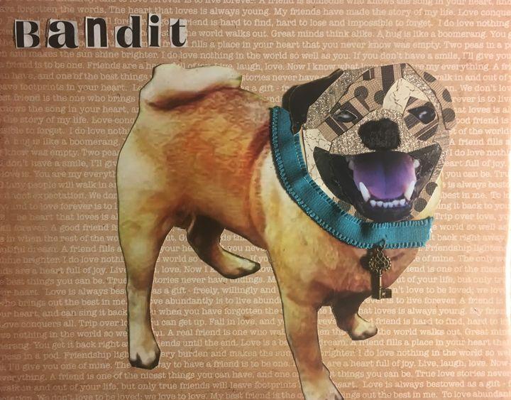 Bandit - Julie Irven