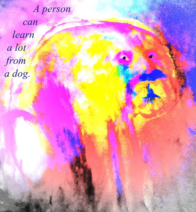 Learn from the dog - Hilde Widerberg ART