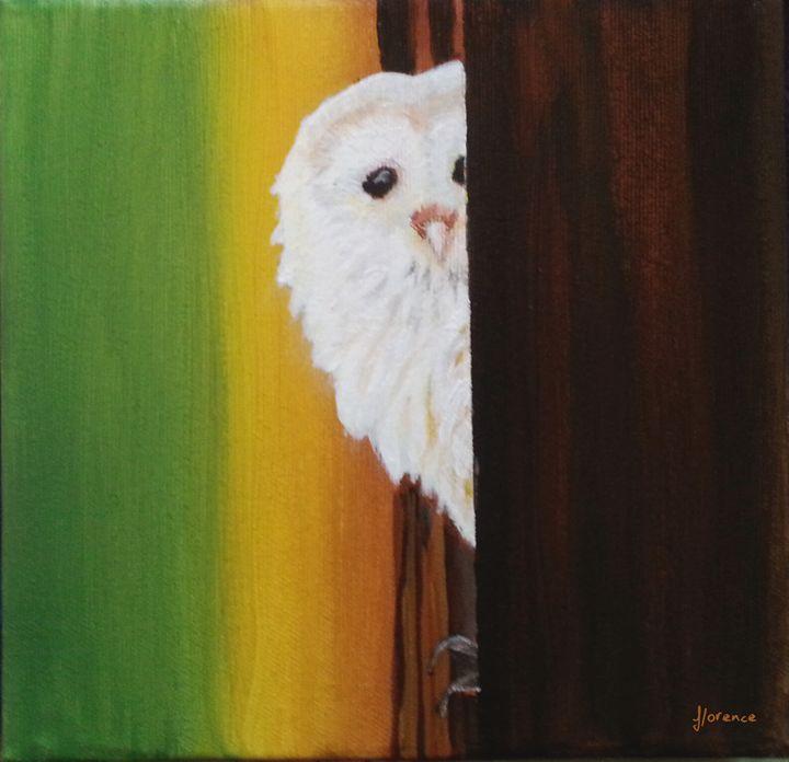 Snowy Owl - Florence