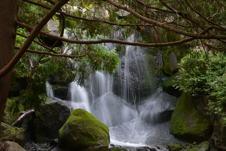 Secluded Waterfall - Michelle Stern Photography